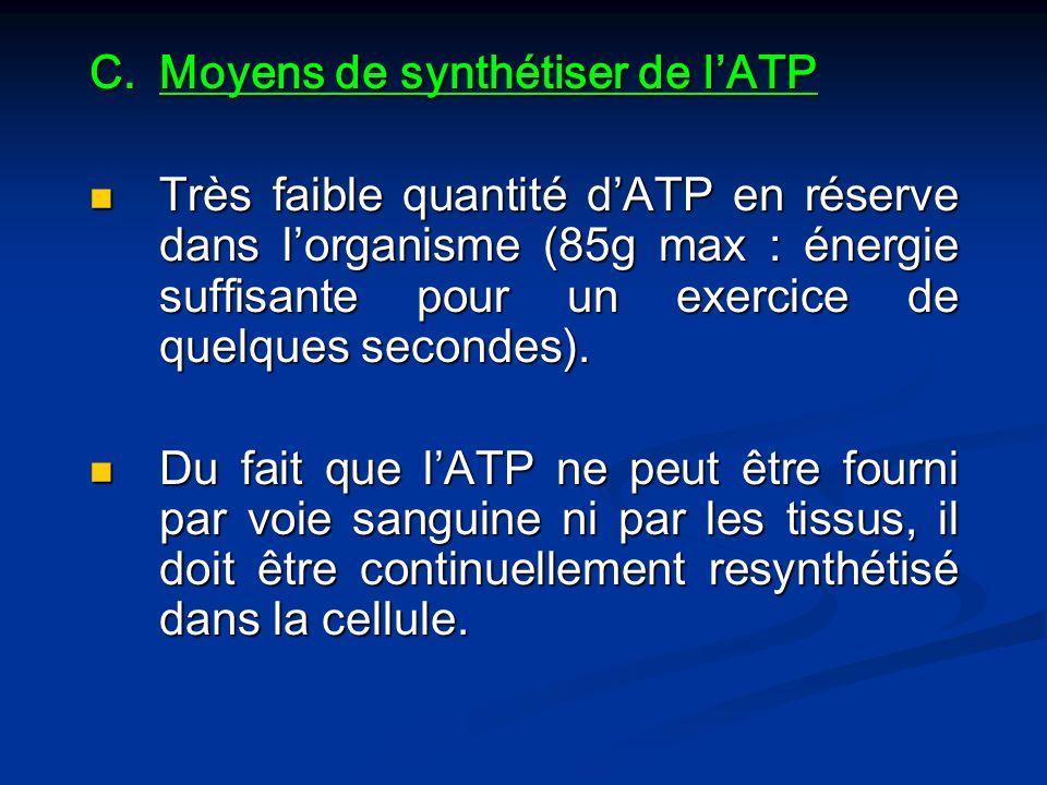 C.Moyens de synthétiser de lATP Très faible quantité dATP en réserve dans lorganisme (85g max : énergie suffisante pour un exercice de quelques second