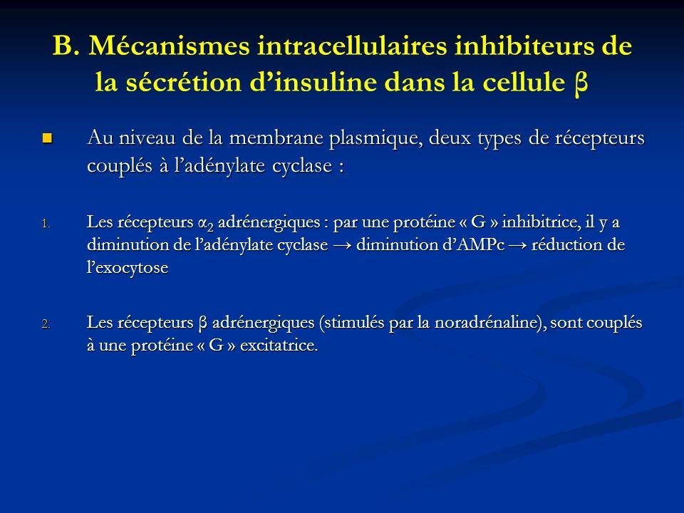 B. Mécanismes intracellulaires inhibiteurs de la sécrétion dinsuline dans la cellule β Au niveau de la membrane plasmique, deux types de récepteurs co