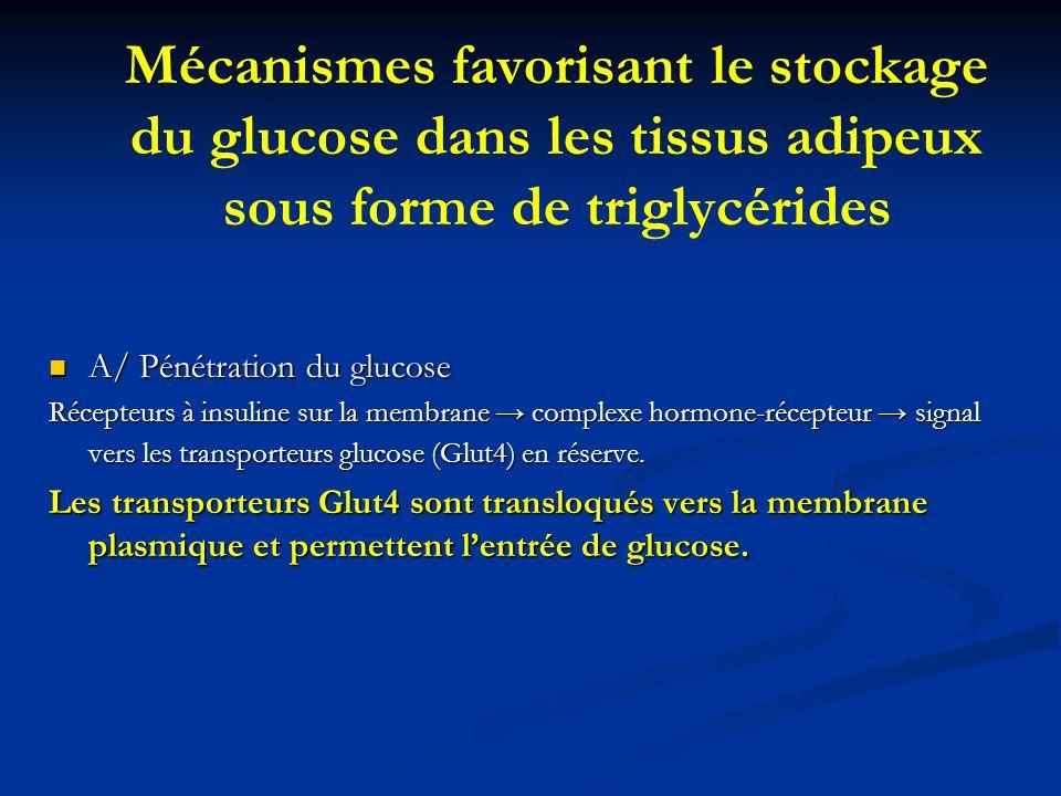 Mécanismes favorisant le stockage du glucose dans les tissus adipeux sous forme de triglycérides A/ Pénétration du glucose A/ Pénétration du glucose R