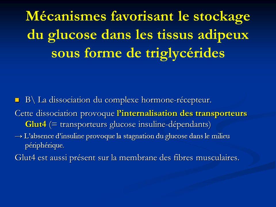 Mécanismes favorisant le stockage du glucose dans les tissus adipeux sous forme de triglycérides B\ La dissociation du complexe hormone-récepteur. B\