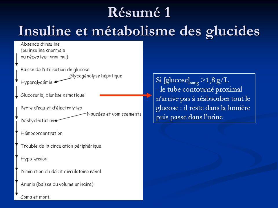 Résumé 1 Insuline et métabolisme des glucides Si [glucose] sang >1,8 g/L - le tube contourné proximal narrive pas à réabsorber tout le glucose : il re