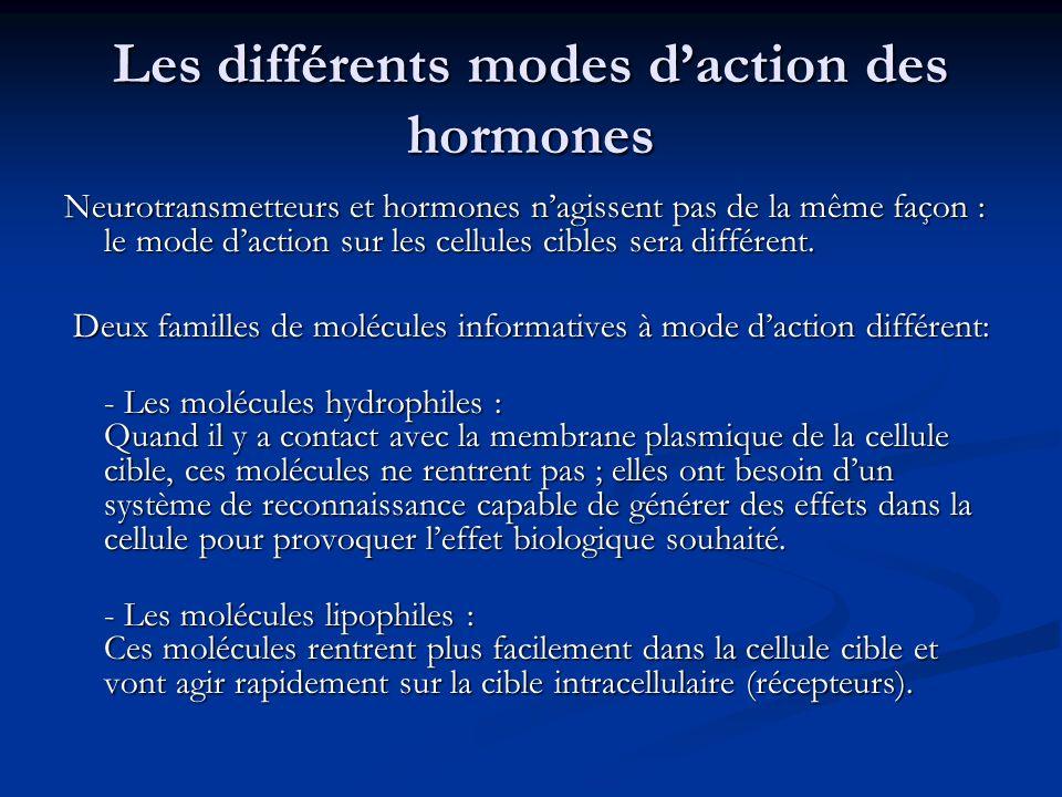 Les différents modes daction des hormones Neurotransmetteurs et hormones nagissent pas de la même façon : le mode daction sur les cellules cibles sera