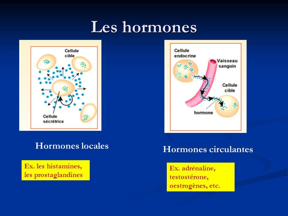 Les hormones Hormones locales Hormones circulantes Ex. les histamines, les prostaglandines Ex. adrénaline, testostérone, oestrogènes, etc.