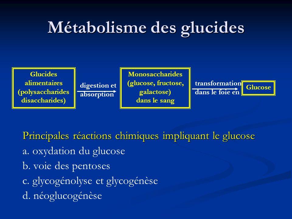 Métabolisme des glucides Principales réactions chimiques impliquant le glucose a. oxydation du glucose b. voie des pentoses c. glycogénolyse et glycog