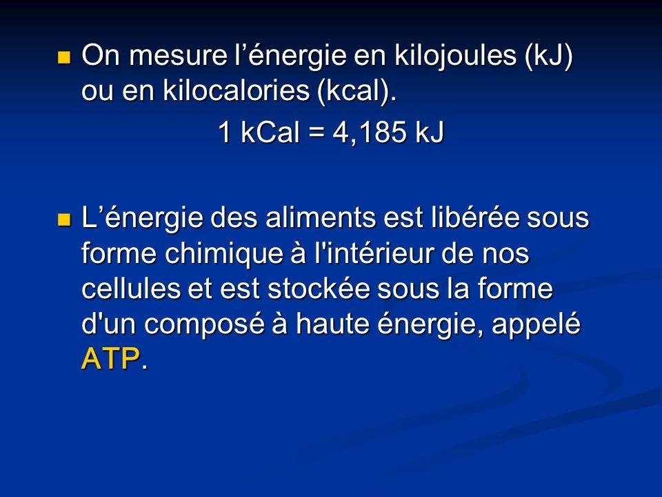 On mesure lénergie en kilojoules (kJ) ou en kilocalories (kcal). On mesure lénergie en kilojoules (kJ) ou en kilocalories (kcal). 1 kCal = 4,185 kJ Lé