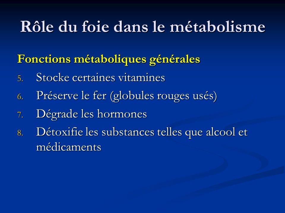 Rôle du foie dans le métabolisme Fonctions métaboliques générales 5. Stocke certaines vitamines 6. Préserve le fer (globules rouges usés) 7. Dégrade l