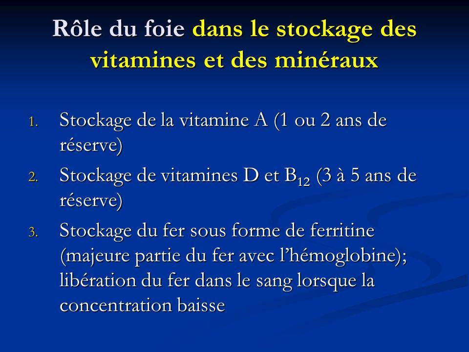 Rôle du foie dans le stockage des vitamines et des minéraux 1. Stockage de la vitamine A (1 ou 2 ans de réserve) 2. Stockage de vitamines D et B 12 (3
