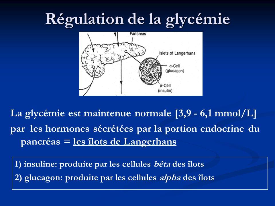 Régulation de la glycémie 1) insuline: produite par les cellules bêta des îlots 2) glucagon: produite par les cellules alpha des îlots La glycémie est
