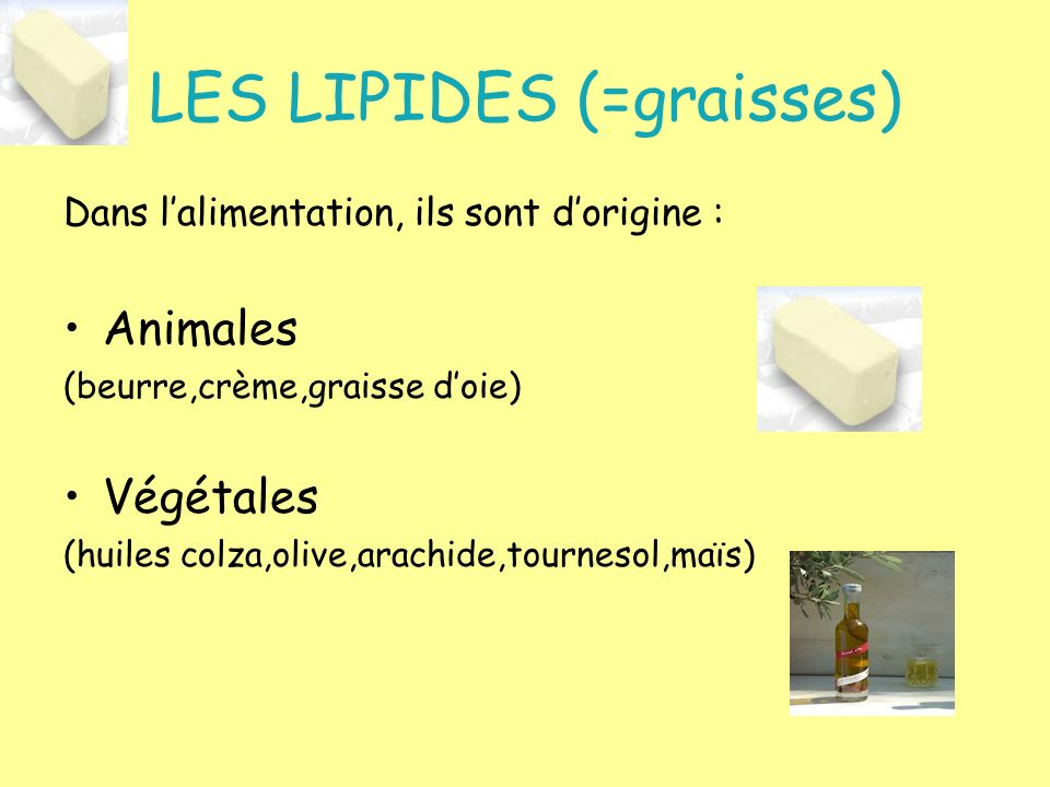 LES LIPIDES (=graisses) Dans lalimentation, ils sont dorigine : Animales (beurre,crème,graisse doie) Végétales (huiles colza,olive,arachide,tournesol,