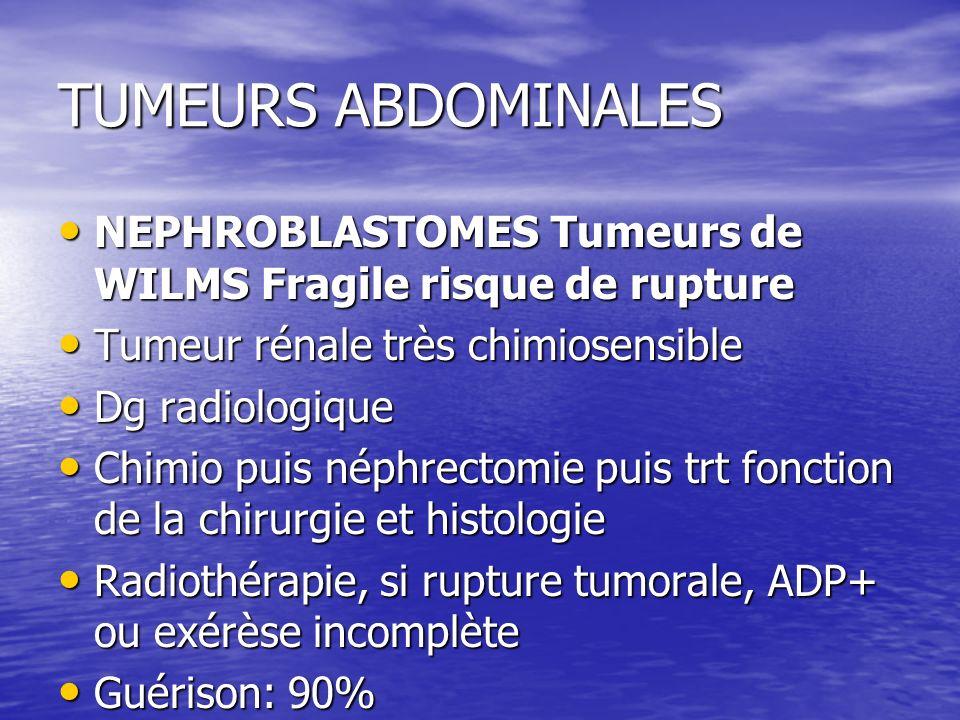 TUMEURS ABDOMINALES NEPHROBLASTOMES Tumeurs de WILMS Fragile risque de rupture NEPHROBLASTOMES Tumeurs de WILMS Fragile risque de rupture Tumeur rénal