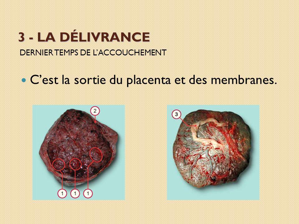 3 - LA DÉLIVRANCE DERNIER TEMPS DE LACCOUCHEMENT Cest la sortie du placenta et des membranes.