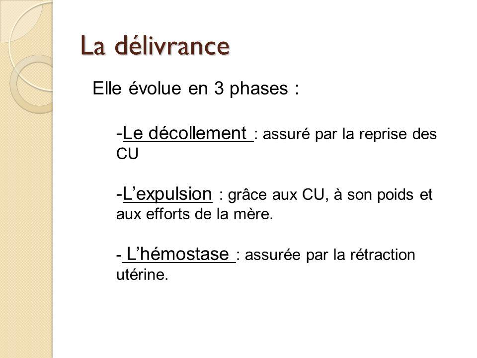 La délivrance Elle évolue en 3 phases : -Le décollement : assuré par la reprise des CU -Lexpulsion : grâce aux CU, à son poids et aux efforts de la mère.