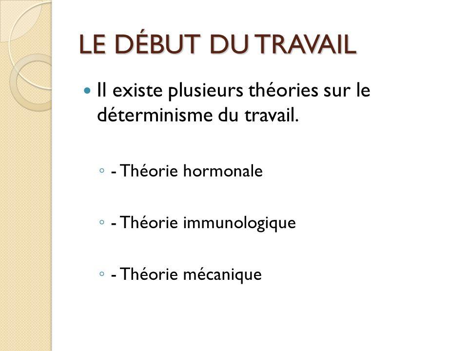 LE DÉBUT DU TRAVAIL Il existe plusieurs théories sur le déterminisme du travail.