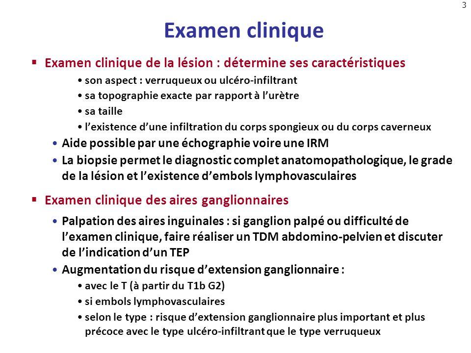 3 Examen clinique Examen clinique de la lésion : détermine ses caractéristiques son aspect : verruqueux ou ulcéro-infiltrant sa topographie exacte par