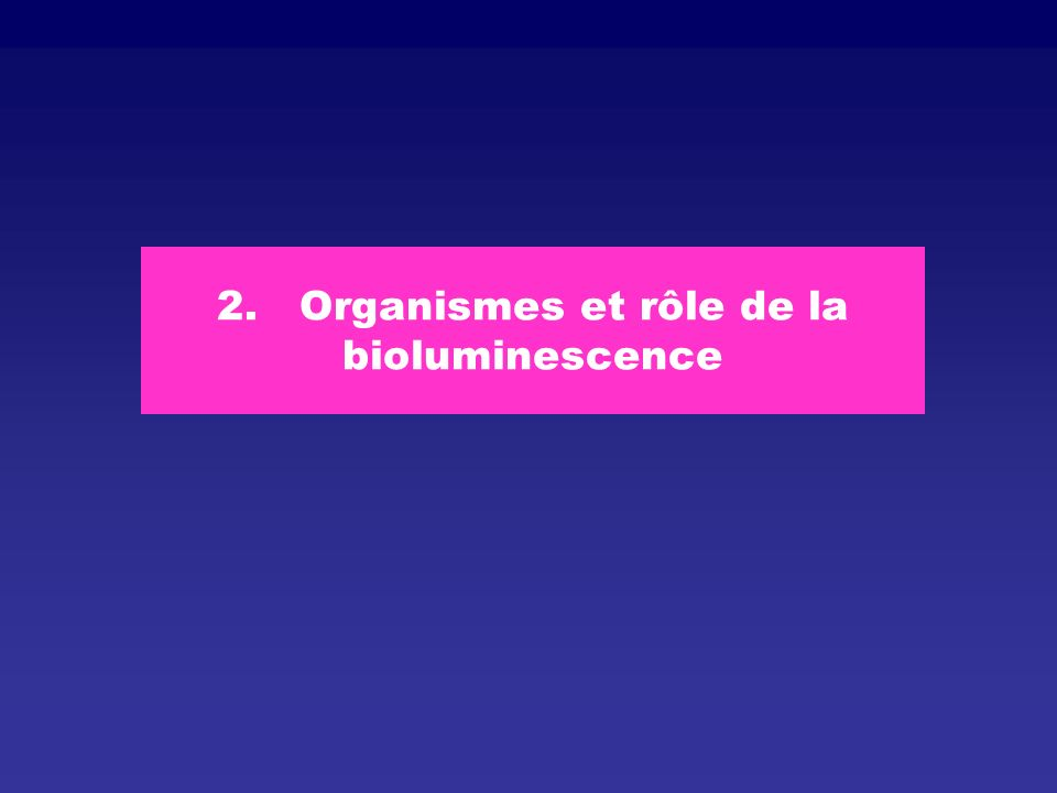 2. Organismes et rôle de la bioluminescence