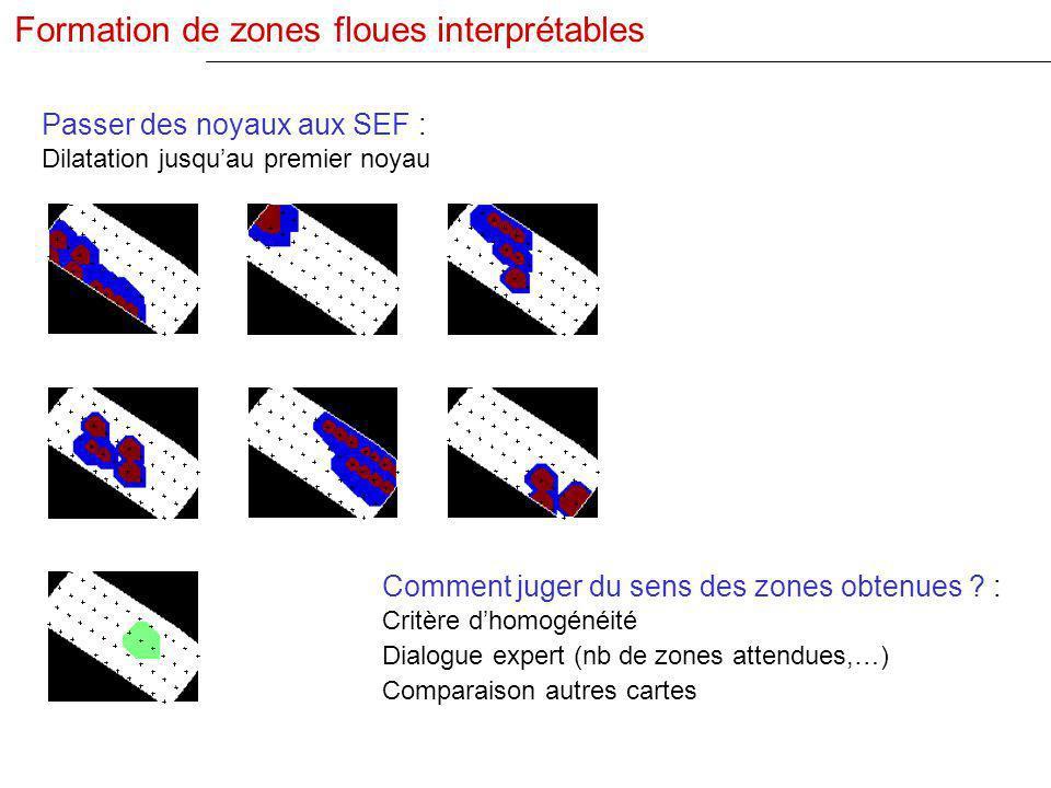 Comment juger du sens des zones obtenues ? : Critère dhomogénéité Dialogue expert (nb de zones attendues,…) Comparaison autres cartes Passer des noyau