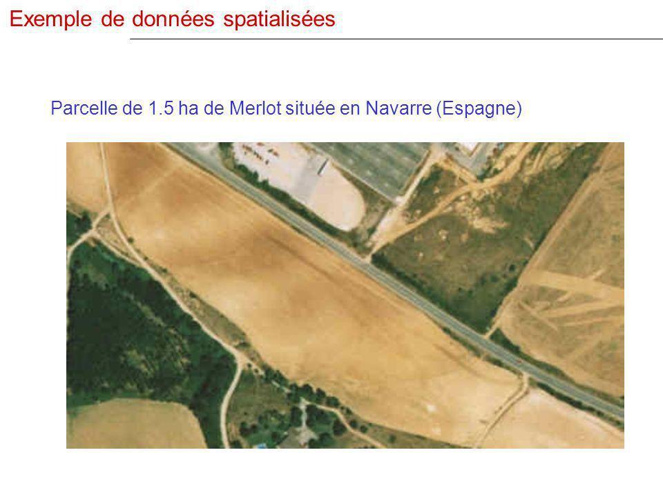 Parcelle de 1.5 ha de Merlot située en Navarre (Espagne) Exemple de données spatialisées