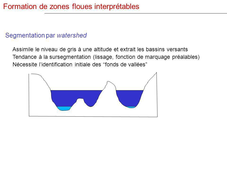 Segmentation par watershed Assimile le niveau de gris à une altitude et extrait les bassins versants Tendance à la sursegmentation (lissage, fonction