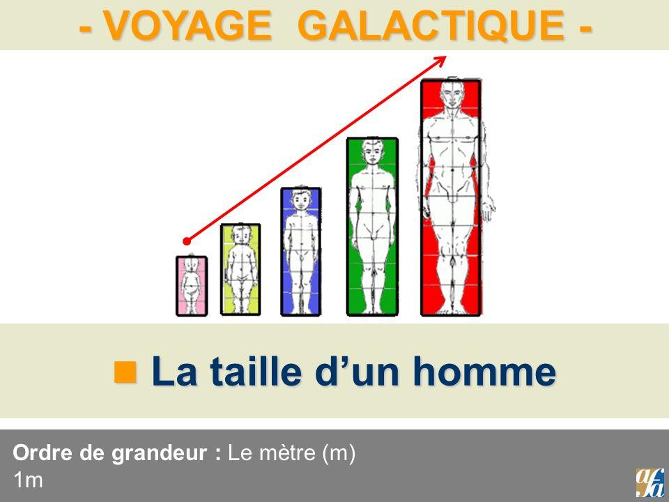 - VOYAGE GALACTIQUE - La taille dun homme La taille dun homme Ordre de grandeur : Le mètre (m) 1m