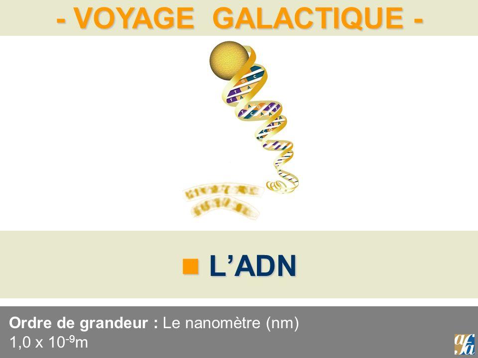 - VOYAGE GALACTIQUE - LADN LADN Ordre de grandeur : Le nanomètre (nm) 1,0 x 10 -9 m