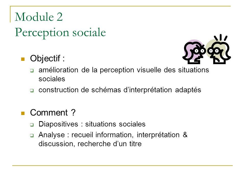 Module 2 Perception sociale Objectif : amélioration de la perception visuelle des situations sociales construction de schémas dinterprétation adaptés