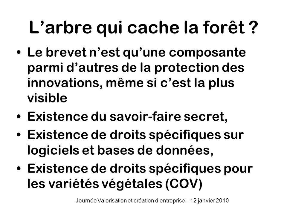 Larbre qui cache la forêt ? Le brevet nest quune composante parmi dautres de la protection des innovations, même si cest la plus visible Existence du