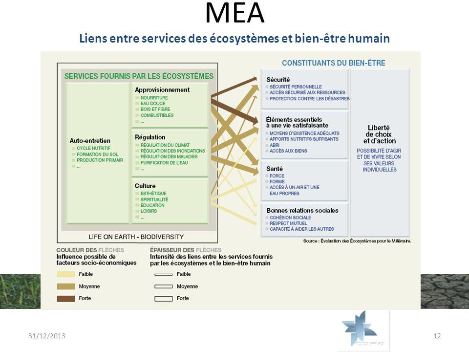 MEA Liens entre services des écosystèmes et bien-être humain 31/12/201312