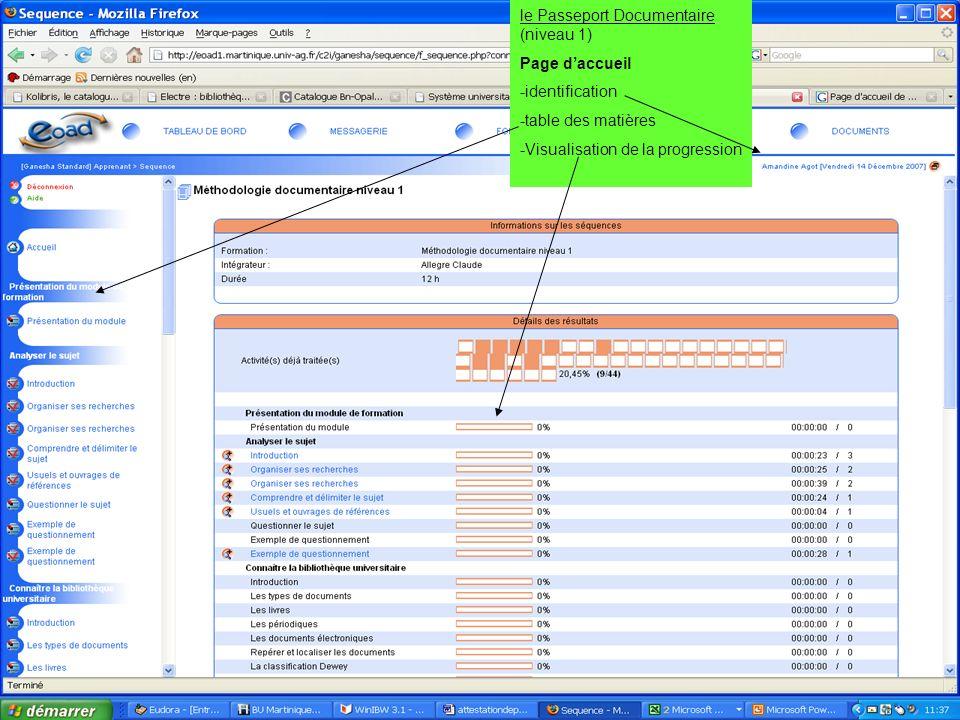 19 juin 2007 SCD-Université Antilles Guyane - Marie France Grouvel le Passeport Documentaire (niveau 1) Page daccueil -identification -table des matiè