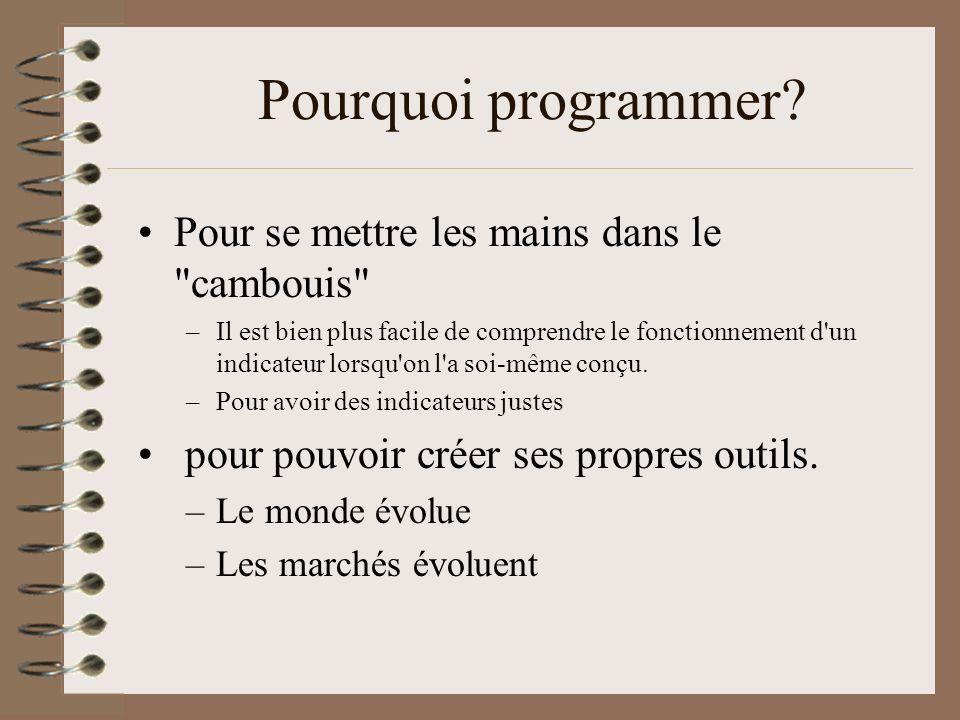 Pourquoi programmer? Pour se mettre les mains dans le