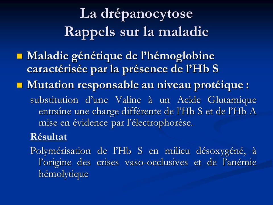 La drépanocytose Rappels sur la maladie Maladie génétique de lhémoglobine caractérisée par la présence de lHb S Maladie génétique de lhémoglobine cara