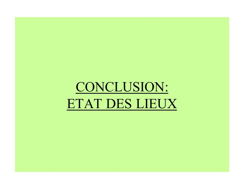 CONCLUSION: ETAT DES LIEUX