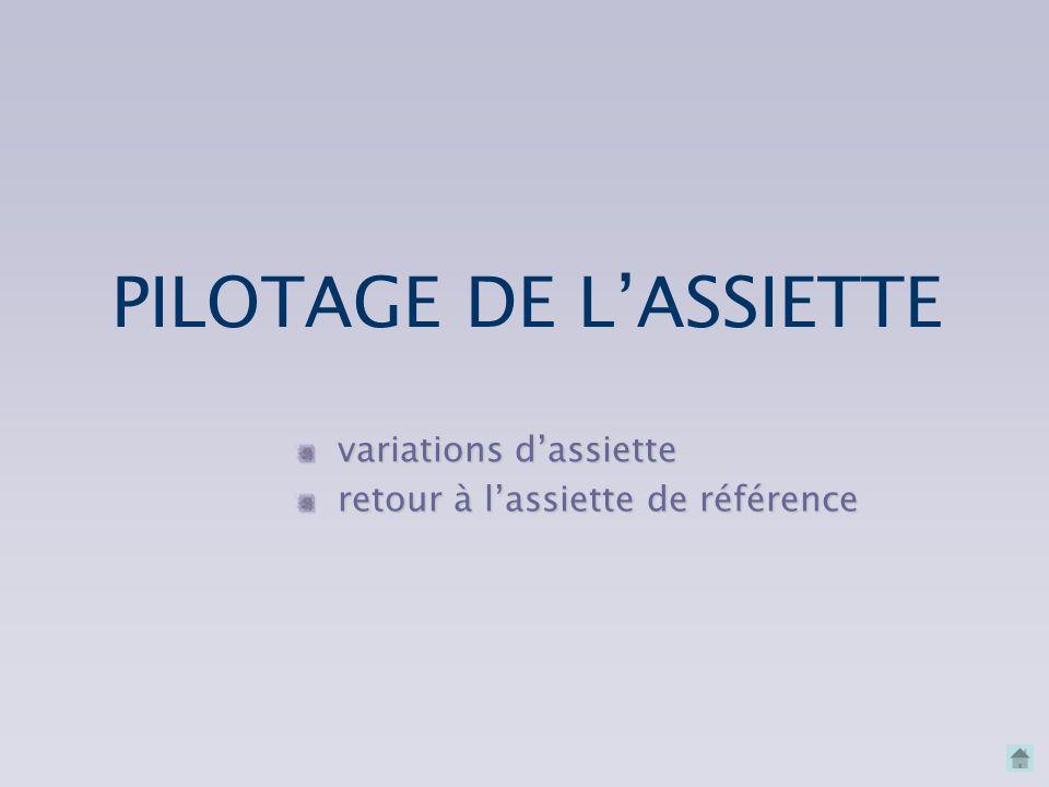 PILOTAGE DE LASSIETTE PILOTAGE DE LASSIETTE PILOTAGE DE LINCLINAISON PILOTAGE DE LINCLINAISON LEÇONS EN VOL LA CONJUGAISON LA CONJUGAISON