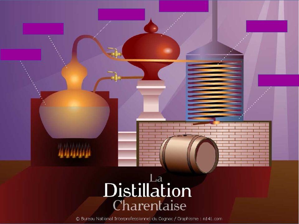 Les crus du Cognac Grande Champagne Grande Champagne Petite Champagne Petite Champagne Borderies Borderies Fins Bois Fins Bois Bons Bois Bons Bois Bois ordinaires ou bois à terroir Bois ordinaires ou bois à terroir