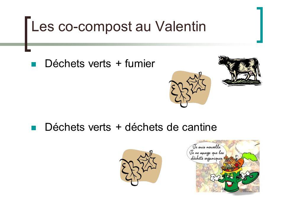Les co-compost au Valentin Déchets verts + fumier Déchets verts + déchets de cantine