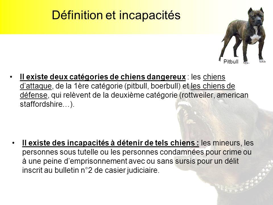 Définition et incapacités Il existe deux catégories de chiens dangereux : les chiens dattaque, de la 1ère catégorie (pitbull, boerbull) et les chiens