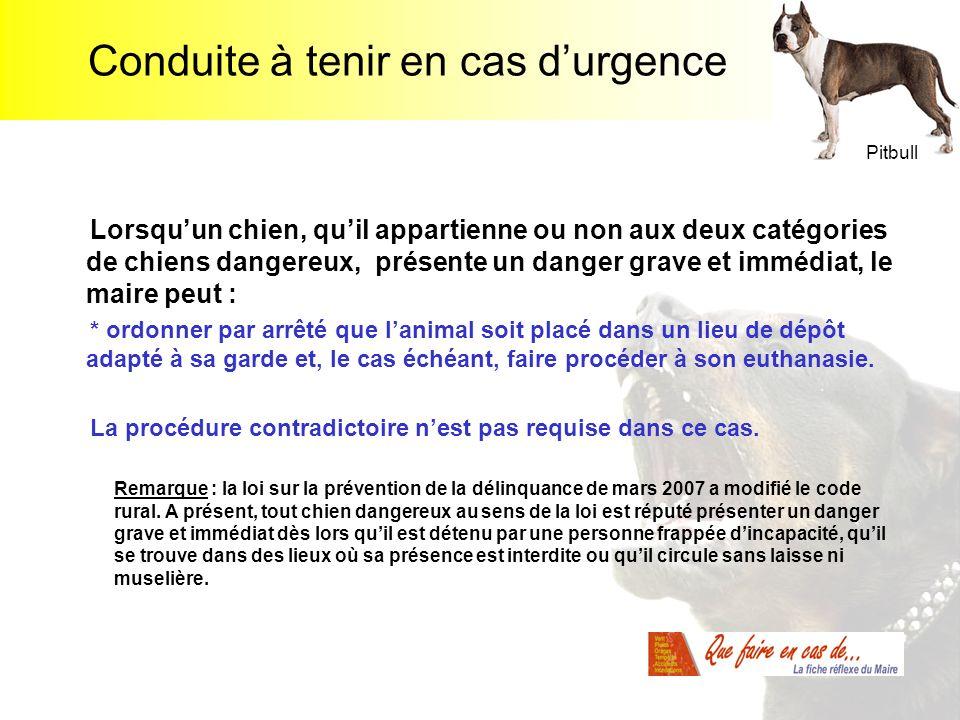 Conduite à tenir en cas durgence Lorsquun chien, quil appartienne ou non aux deux catégories de chiens dangereux, présente un danger grave et immédiat