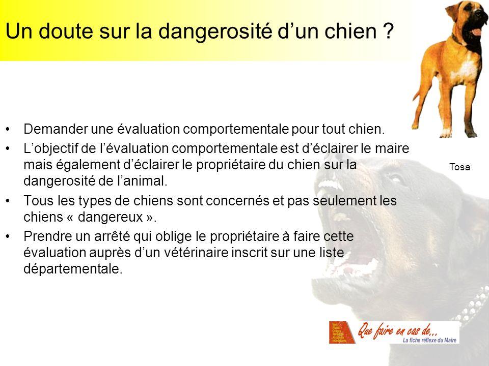 Un doute sur la dangerosité dun chien ? Demander une évaluation comportementale pour tout chien. Lobjectif de lévaluation comportementale est déclaire