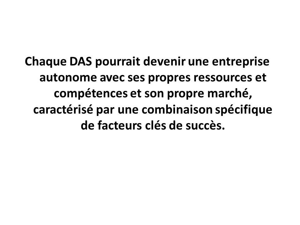 Chaque DAS pourrait devenir une entreprise autonome avec ses propres ressources et compétences et son propre marché, caractérisé par une combinaison s