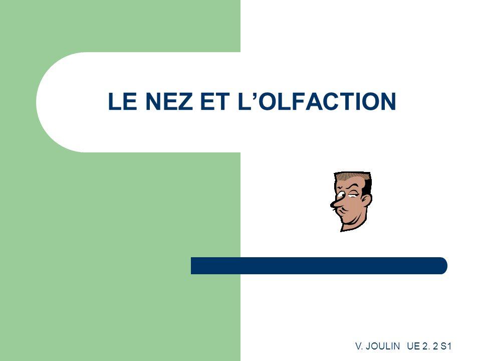 V. JOULIN UE 2. 2 S1 LE NEZ ET LOLFACTION