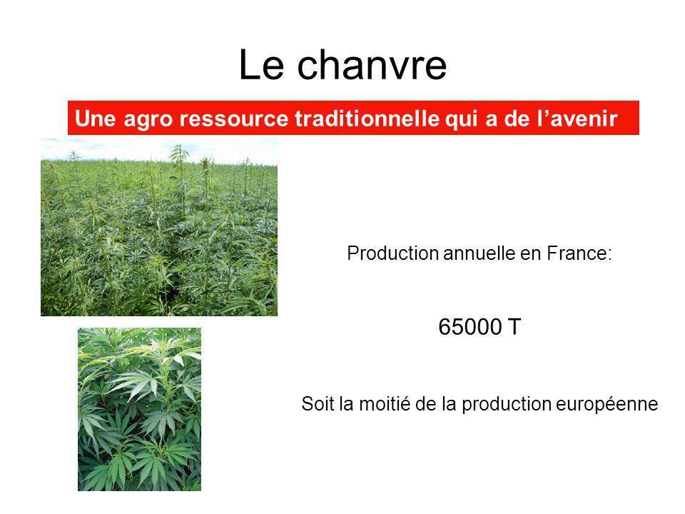 Le chanvre Une agro ressource traditionnelle qui a de lavenir Production annuelle en France: 65000 T Soit la moitié de la production européenne