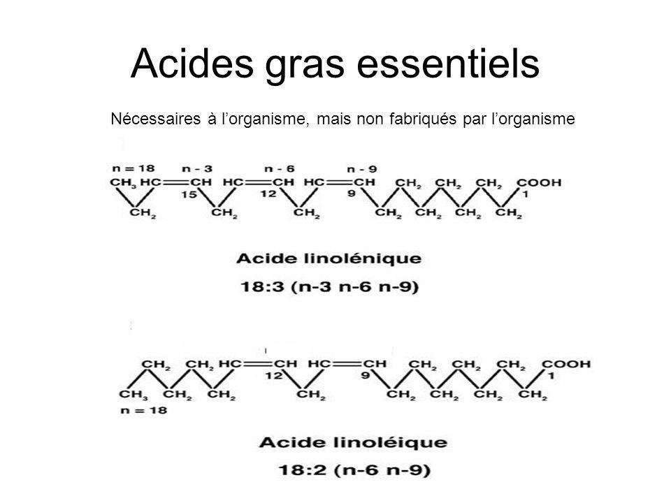 Acides gras essentiels Nécessaires à lorganisme, mais non fabriqués par lorganisme