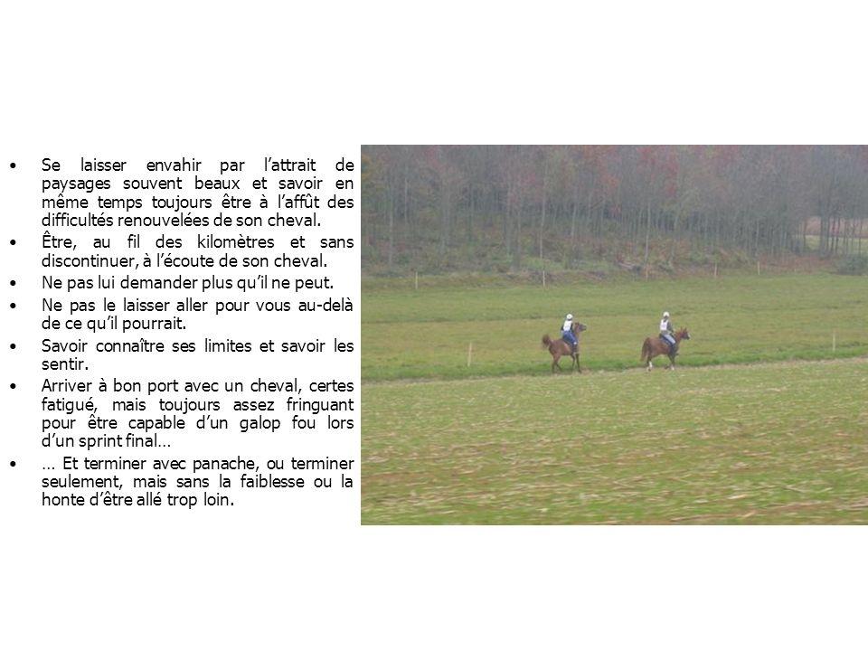 Se laisser envahir par lattrait de paysages souvent beaux et savoir en même temps toujours être à laffût des difficultés renouvelées de son cheval. Êt