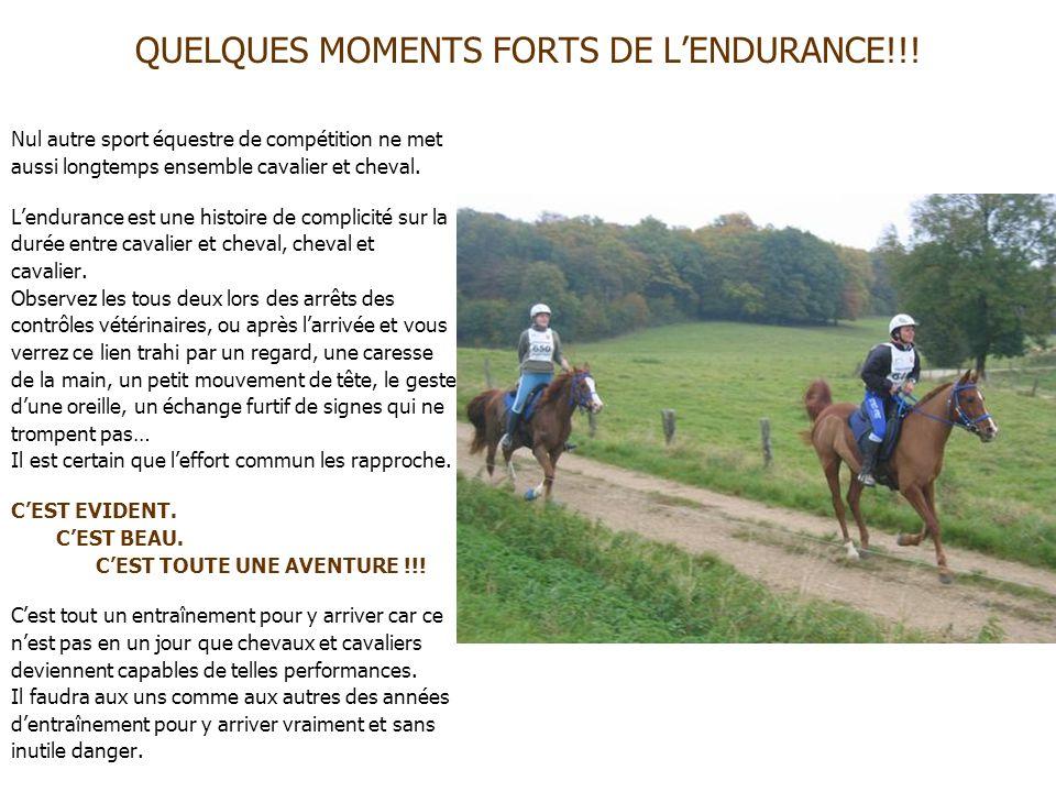 QUELQUES MOMENTS FORTS DE LENDURANCE!!! Nul autre sport équestre de compétition ne met aussi longtemps ensemble cavalier et cheval. Lendurance est une