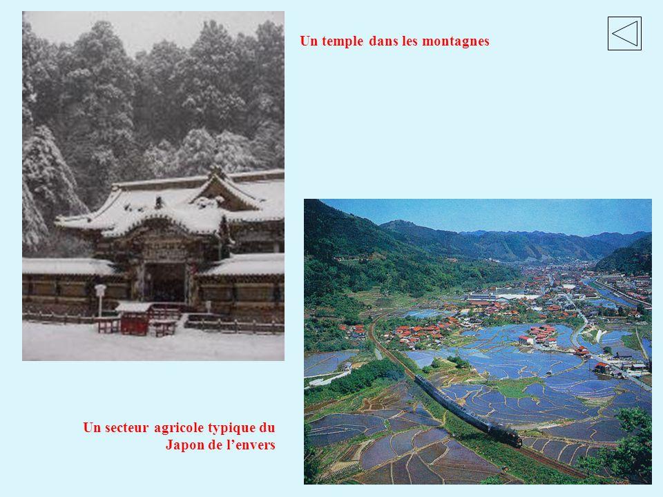 Un secteur agricole typique du Japon de lenvers Un temple dans les montagnes