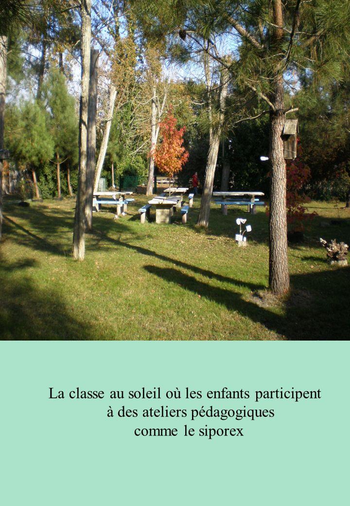 La classe au soleil où les enfants participent à des ateliers pédagogiques comme le siporex