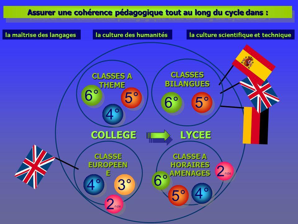 CLASSES A THEME CLASSE A HORAIRES AMENAGES Assurer une cohérence pédagogique tout au long du cycle dans : COLLEGE 6° 5° 6° 2 nde 4° 3° CLASSE EUROPEEN