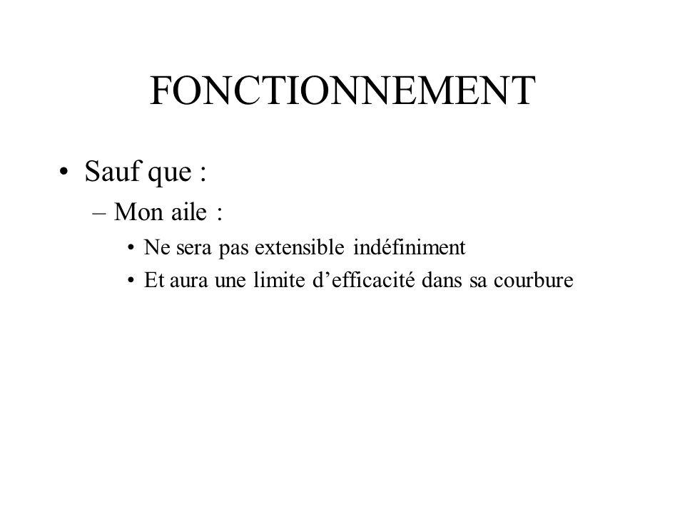 FONCTIONNEMENT Sauf que : –Mon aile : Ne sera pas extensible indéfiniment Et aura une limite defficacité dans sa courbure