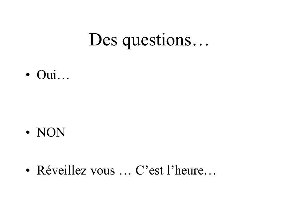 Des questions… Oui… NON Réveillez vous … Cest lheure…