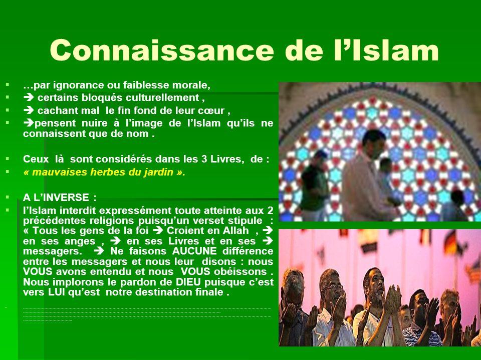 Connaissance de lIslam …par ignorance ou faiblesse morale, certains bloqués culturellement, cachant mal le fin fond de leur cœur, pensent nuire à l im
