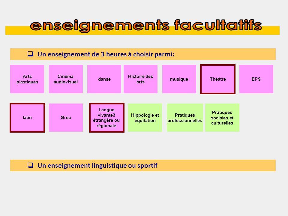 Un enseignement de 3 heures à choisir parmi: Un enseignement linguistique ou sportif Arts plastiques Cinéma audiovisuel Hippologie et équitation Théât